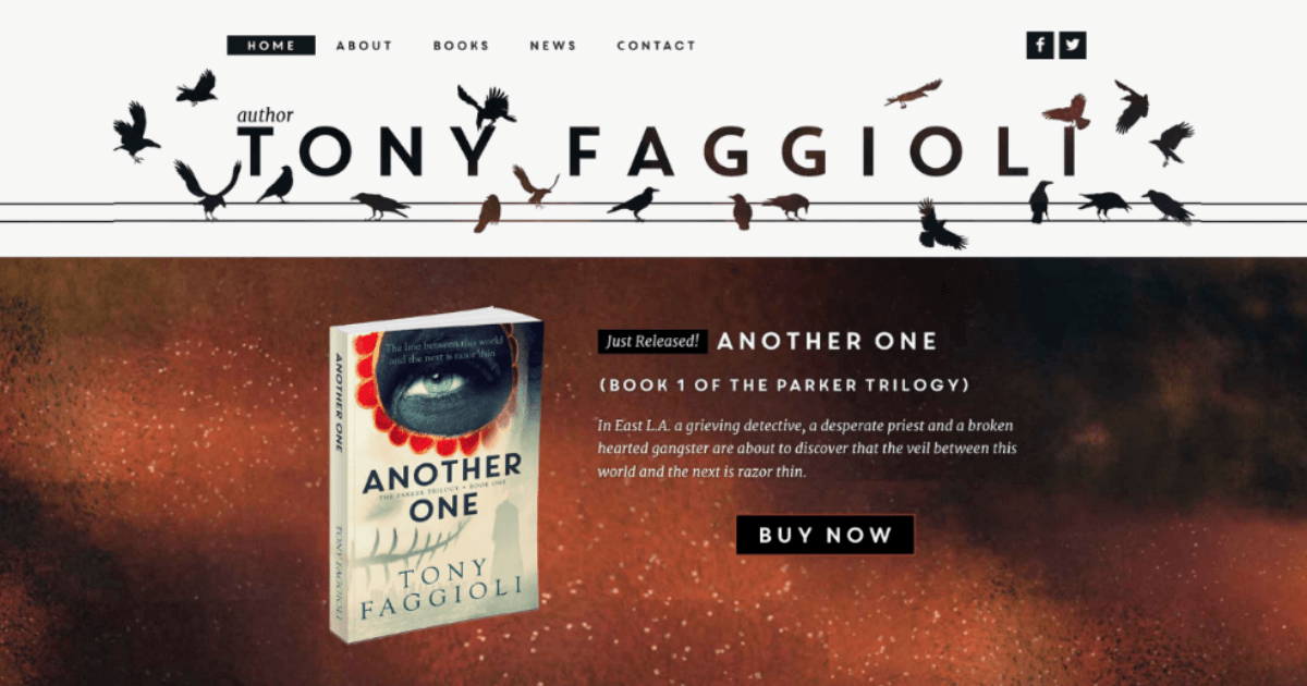author website design & development for Tony Faggioli
